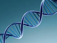 maladie-genetique